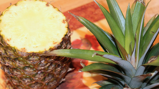 Cleaning and Coring a Pineapple